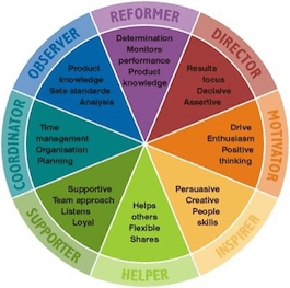 8 Behaviour Personality Profile - Insights Discovery Wheel – Personal Development Profiles